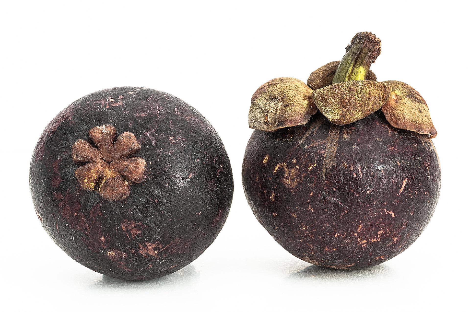 Garcinia mangostana - Mangostane