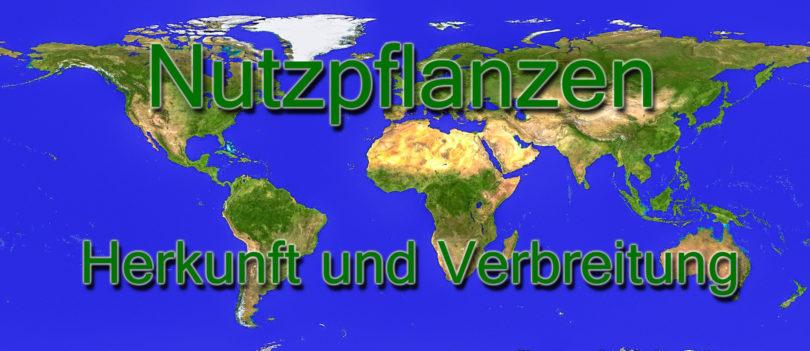 Herkunft und Verbreitung von Nutzpflanzen