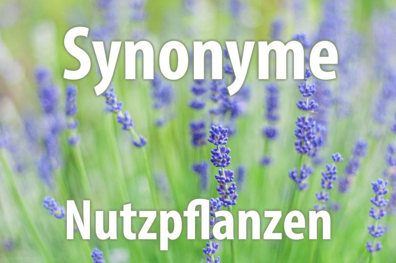 Synonyme von Nutzpflanzen
